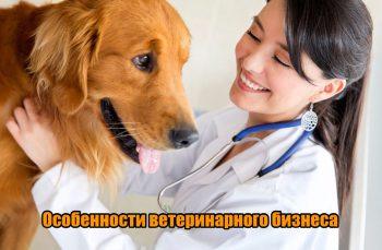 Ветеринарный бизнес: пошаговое руководство