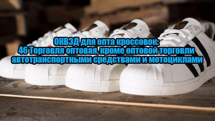 791d14c0 Если оптовая торговля будет осуществляться в небольшом формате или через  интернет, а основными партнерами будут малые и средние розничные магазины,  ...