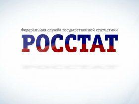 ИП отчет в Росстат