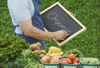 Как заработать на продаже органических продуктов