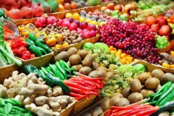 Оптовые поставки овощей: бизнес с нуля в своем регионе, поиск поставщиков