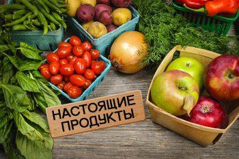 Продажа продуктов из деревни: бизнес на экологически чистых товарах