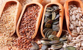 Оптовая торговля зерном, поставки за рубеж