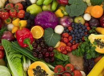 Как открыть бизнес с нуля на оптовой торговле овощами