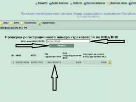 Регистрационный номер в ФСС для ИП