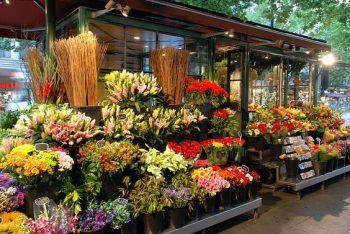 Как открыть цветочный магазин розничный: основные этапы
