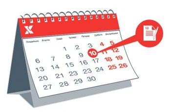 Изменение сроки оплаты по контрактам по 44-ФЗ в 2019 году