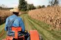 Выгодно ли заниматься фермерским хозяйством?