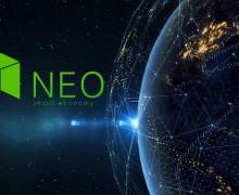 Что такое криптовалюта Neo