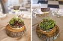 Организация эко-свадеб – новый популярный способ заработать