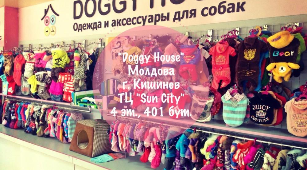 Пример внутреннего вида магазина одежды и аксессуаров для собак.