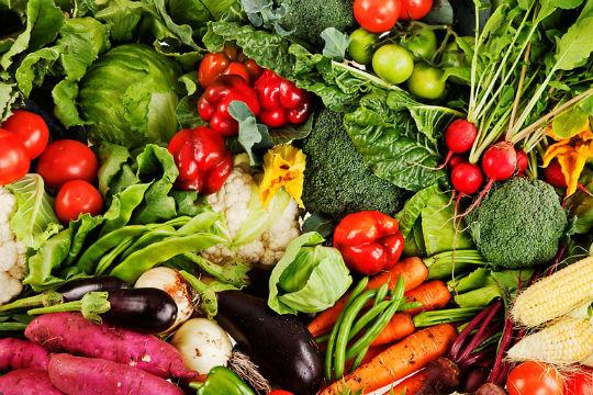 Как отрыть овощной киоск? Готовый бизнес-план овощного киоска
