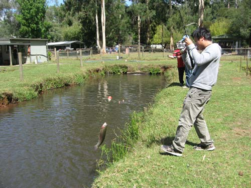 бизнес платная рыбалка