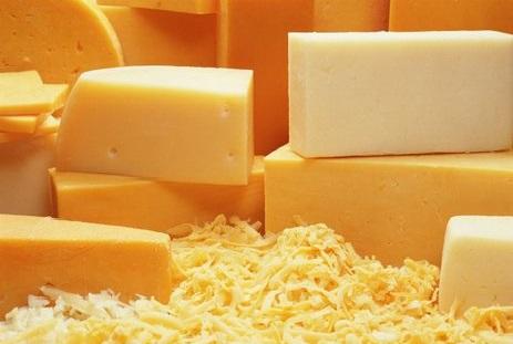 Готовый бизнес план производства сыра