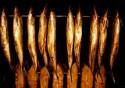Как открыть бизнес по копчению мяса и рыбы