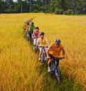 Организация велосипедных прогулок или как заработать на велотуризме