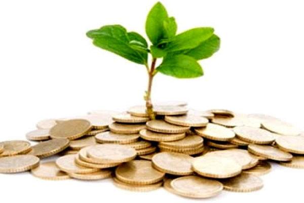 Только краткость, убедительность и доступность может заинтересовать инвестора