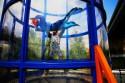 Выгодная альтернатива прыжкам с парашютом – полет в аэродинамической трубе