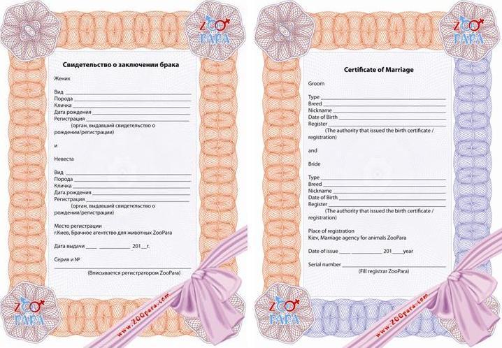 Как сделать регистрацию для жены 629