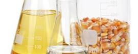 Как открыть производство спирта? Готовый бизнес-план производства спирта